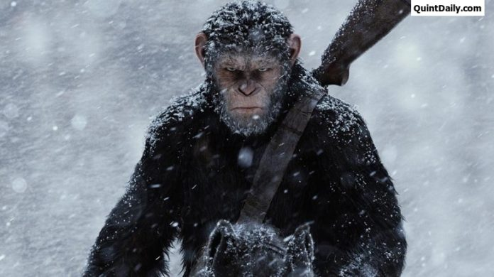 War of the planet of the apes Review-Rating-Box office Collection Report