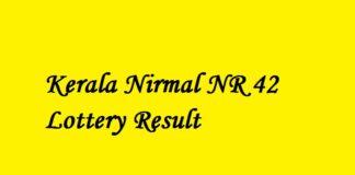 Nirmal NR 42 Lottery Result