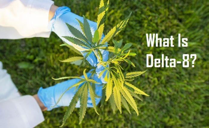 डेल्टा 8 क्या है