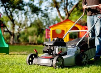 Lawn Mown
